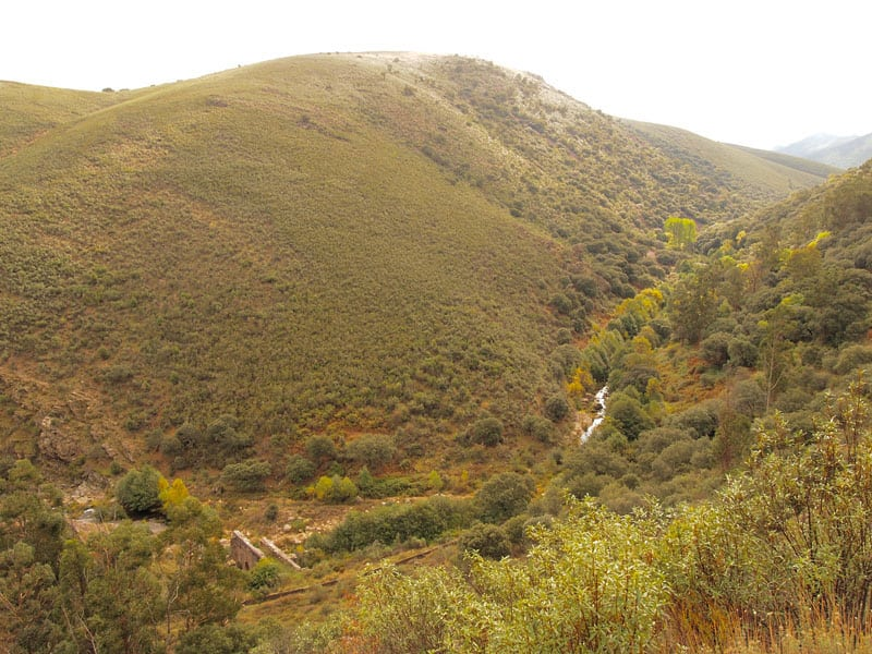 spain_extremadura_goat_horn_river_walk_top_of_slope