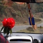 In the Back Seat on the Massage Roads of Bhutan, Protected